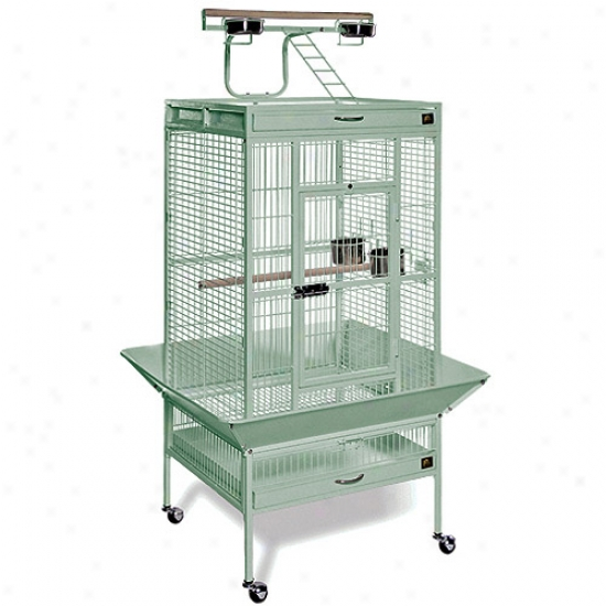 Prevue Hendryx Pp-3152sage Medium Wrought Iron Select Bird Cage - Sage Green