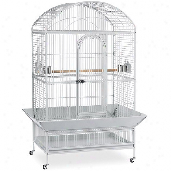 Prevue Hendryx Pp-3163w Capacious Dometop Parrof Cage - Pewter
