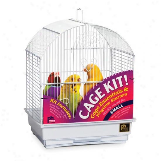 Prevue Hendryx Round Top Parakeet Bird Cage Starter Kit