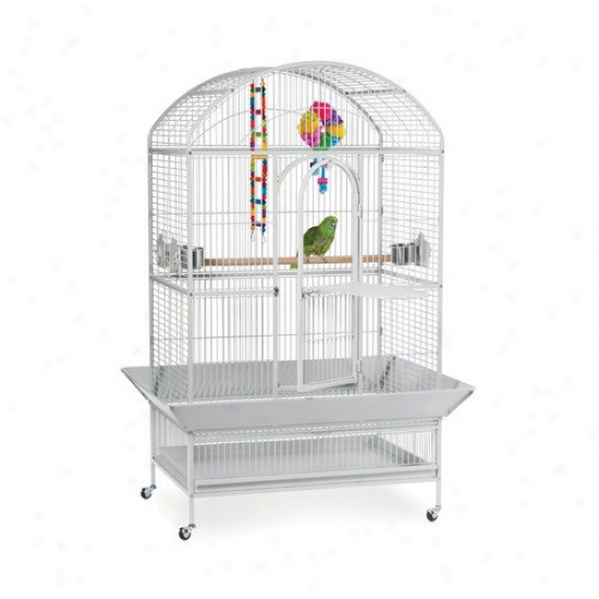 Prevue Hendryx Stamp Series Large Dometop Wrought Iron Bird Cage