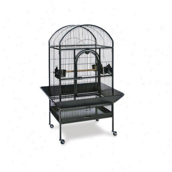 Prevue Hendryx Signature Series Medium Dometop Wrought Iron Bird Cage