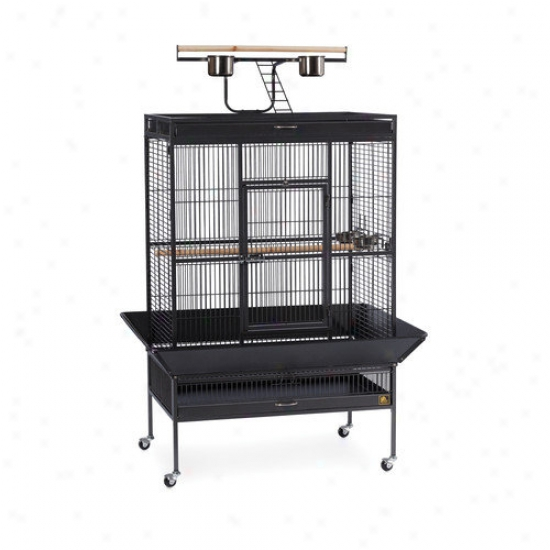 Prevue Hendryx Signature Seires Select Wrought Iron Cage - 36x24x66