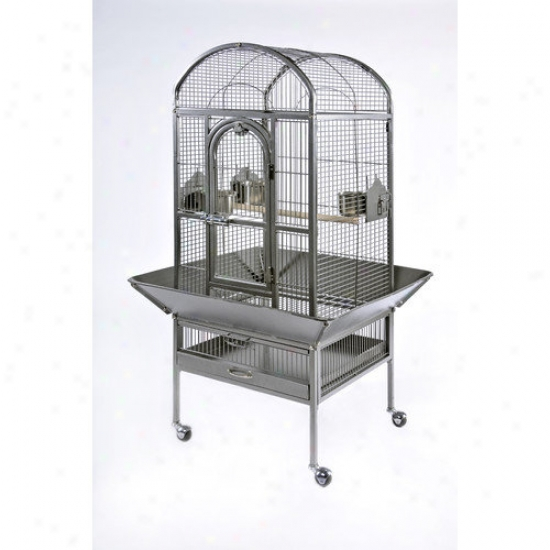 Prevue Hendryx Signafure Series Small Dometop Wrought Iron Bird Cage