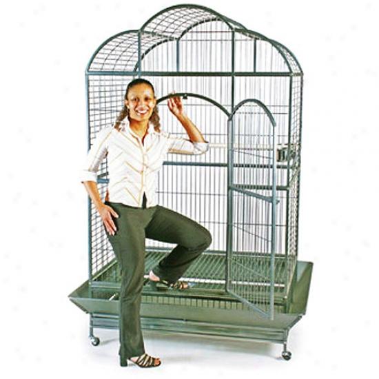 Prevue Hendryx Wrought Iron Silverado Macaw Dometop Bird Cage , Silver