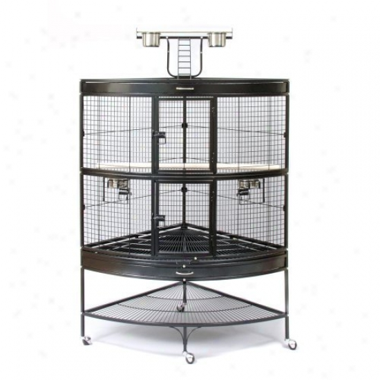 Prevue Pet Products Corner Parrot Cage-black 3158blk