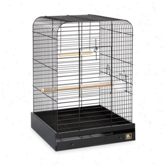 Prevue Pet Products Parrot Cage