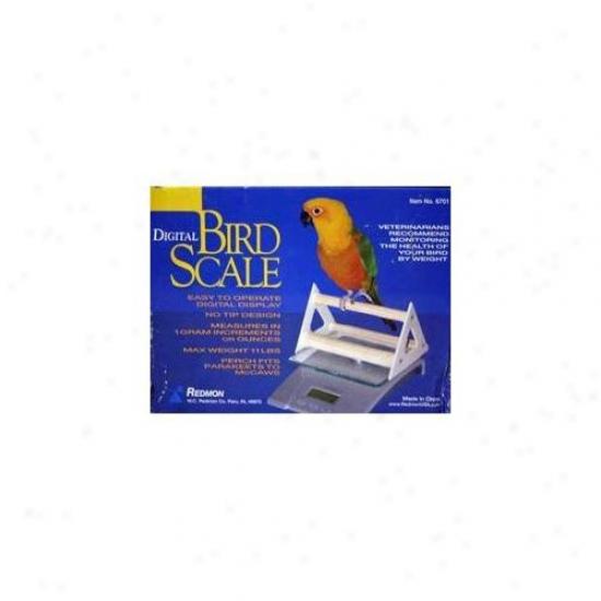 Redmon 6701 Digital Bird Scale W/perch