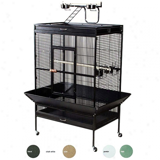 Selected Wrought Iron Large Parrot Cage