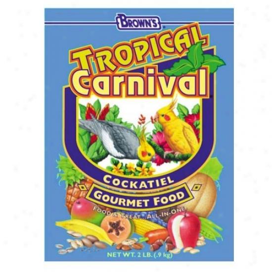 Figurative Carnival Food For Cockatiel