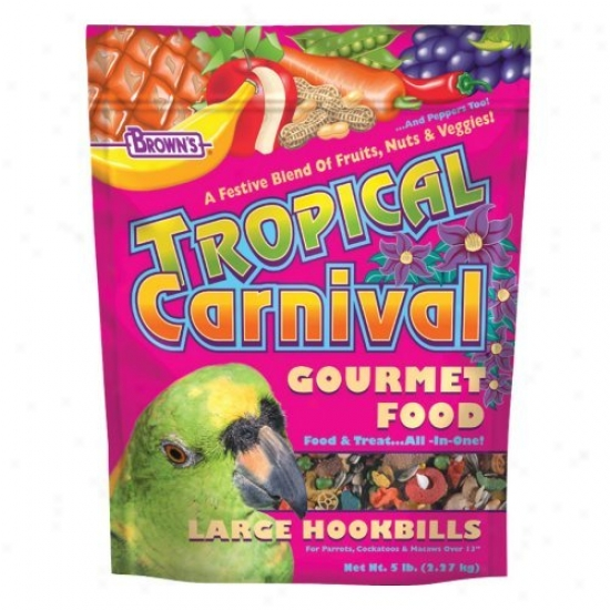 Tropical Carnival Food For Large Hookbill