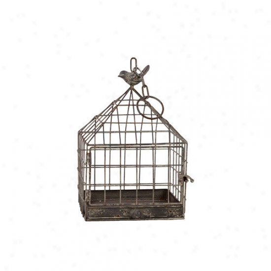 Urban Trends Metal Bird Cage
