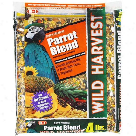 Wild Hatvest 4lb Parrot Diet