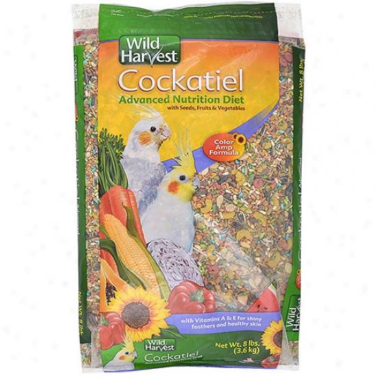 Wild Harvest Bag Diet Cockateil, 8lb