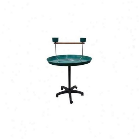 Yml Group Ps36 - Parrot Put - 36 X 48 Inches