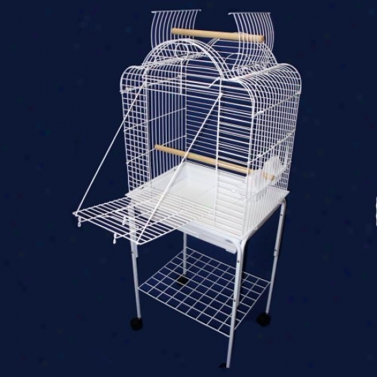Yml Scallop Playop Bird Cage