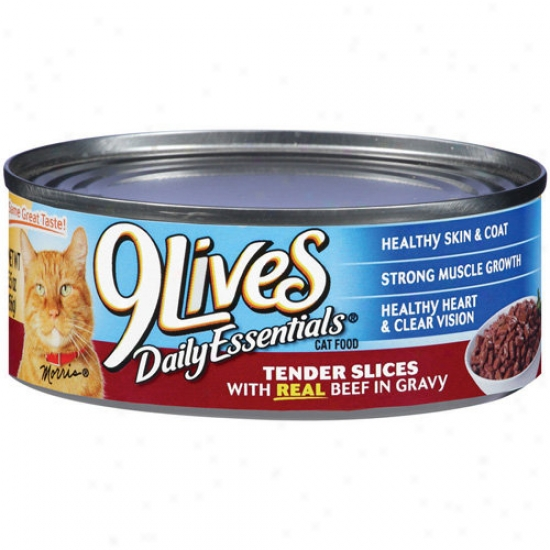 9 Lives Real Beef In Gravy Cat Food (5.5-oz, Question Of 24)