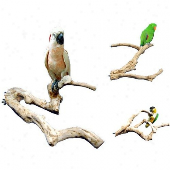 A&e Cage Co. Java Wood Multi Branch Perch