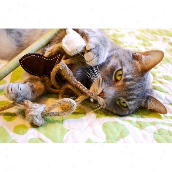 Abo Gear Fishijg Pole Cat Toy