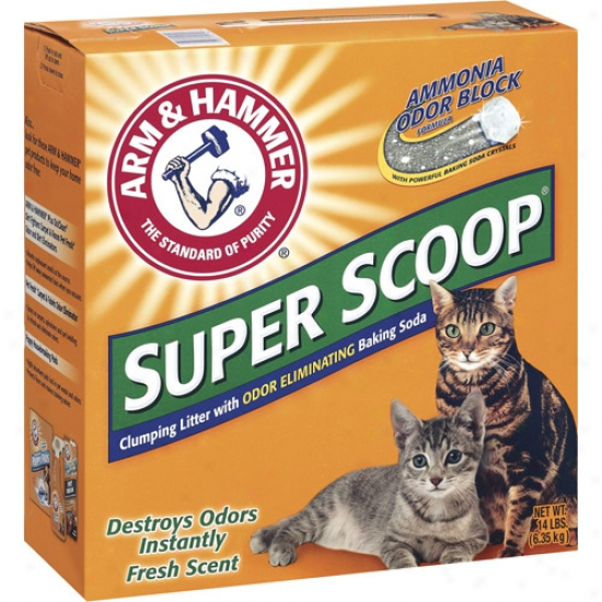 Arm & Hammer: Super Scoop Fresh Track Cat Litter, 14 Lb
