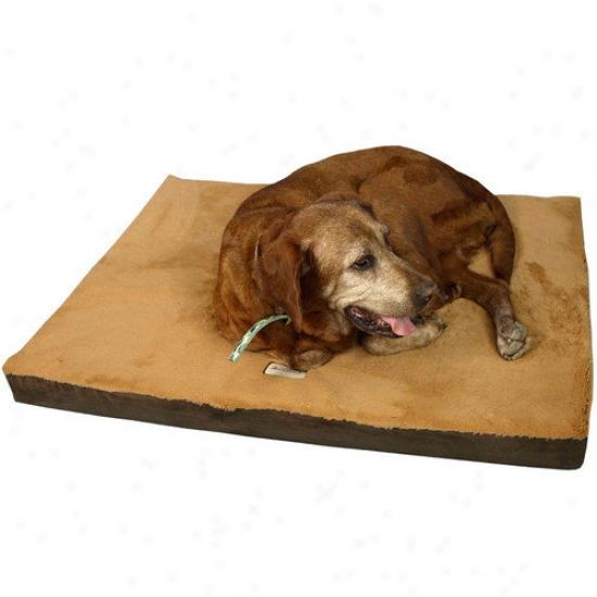 Armarkat Memory Foam Pet Bex