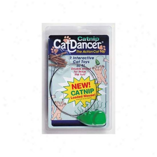 Cat Dancer Catnip Cat Tou