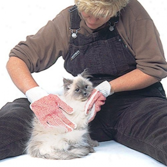 Cat Grooming Gloves (1 Pairr)