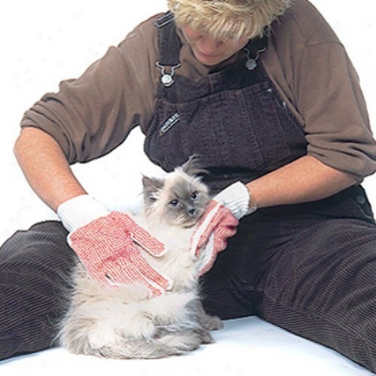 Cat Grooming Gloves-free