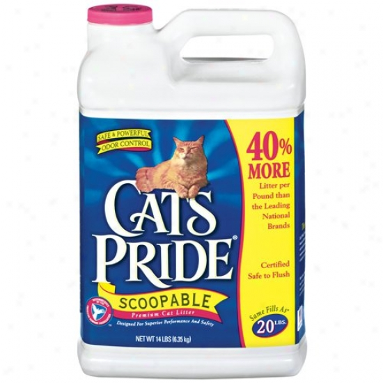 Cat's Pride: Scoopable Premium W/odor Control Cat Litter, 14 Lb