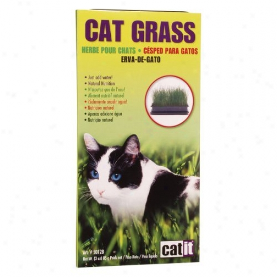 Catit Cat Grass - 3oz