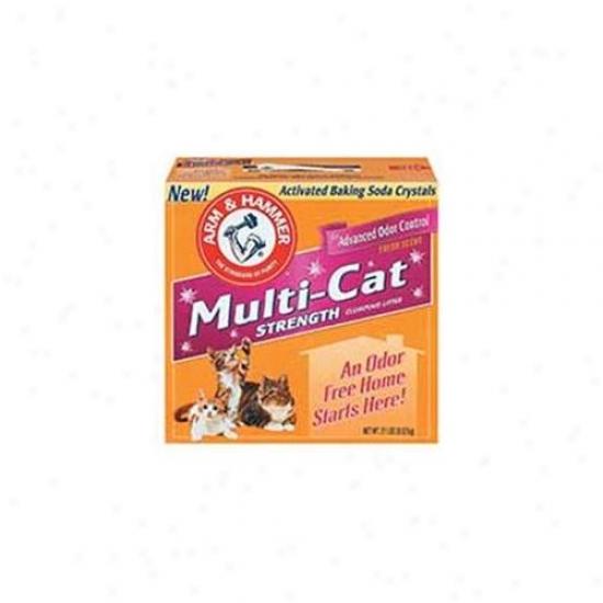Church & Dwight Multicat Litter 21 Pounds  - 02206/02215 -pack Of 2