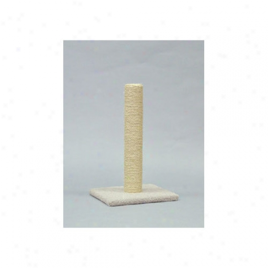 Class6 Kitty Sisal Scratching Post