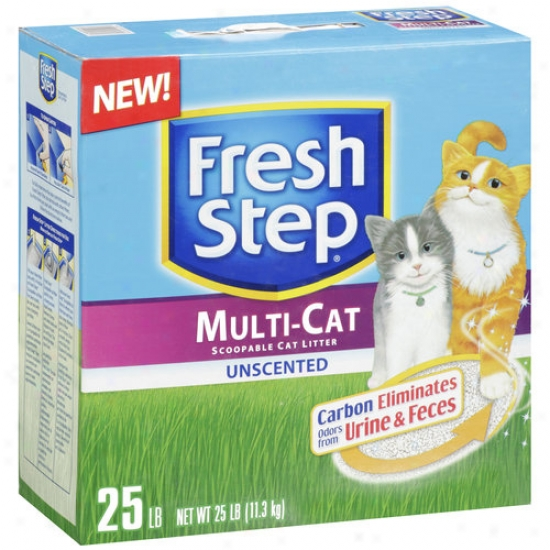 Clorox Petcare Products 377555 Florid Step Multi-cat Litter