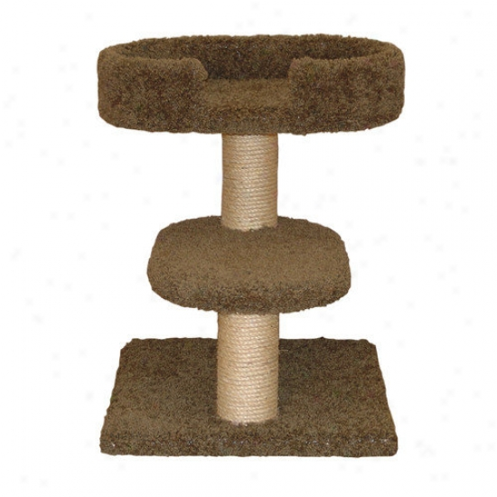 Family Cat 23'' Two Row Cat Tree With Lounger