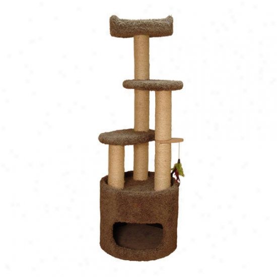 Family Cat 53'' Condo Cat Tree With Sky Lookout