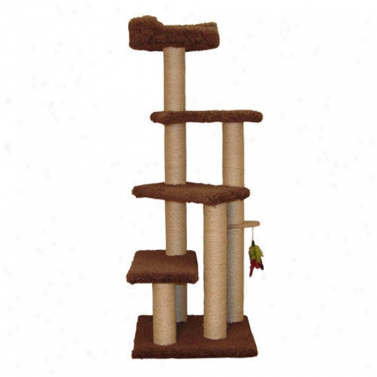 Family Cat 55'' Step Up Cat Tree With Sky Lookout