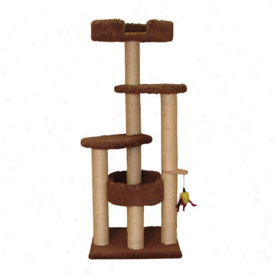 Family Cat 55'' Three Station Cat Tree With Two Sky Loungers
