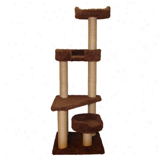 Family Cat 60'' Cat Tower With Skylookout And Lounger