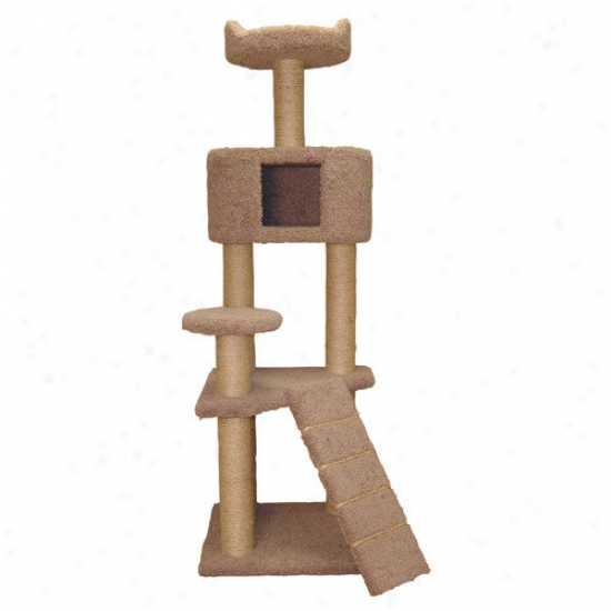 Family Cat 64'' Cat Tree With Condo And Sky Lookout