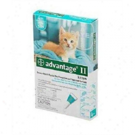 Fce Advantage 2 Cat