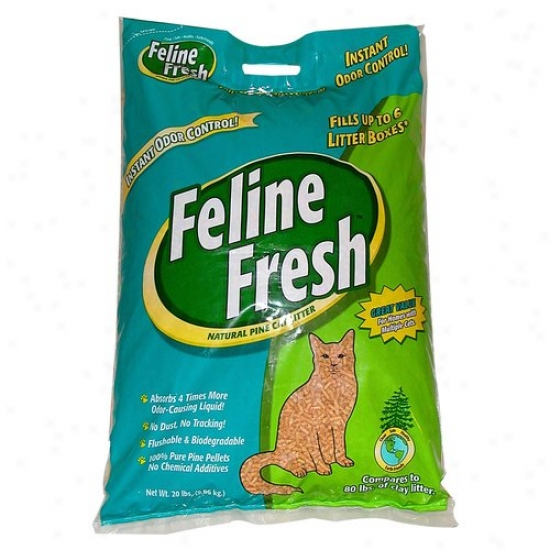 Feline Fresh Unaffected Pine Cat Litter, 20 Lbs