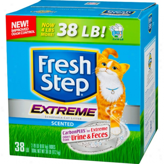 Florid Step Last Odor Contrpl Scoopable Cat Litter, 38 Lbs
