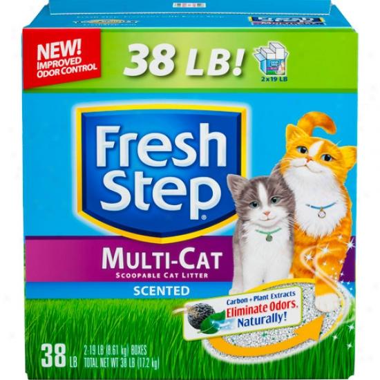 Fresh Step Multi-cat Scented Cat Litter, 38 Lbs