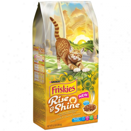 Friskies Dry Rise And Shine Cat Food, 6.3 Lbs