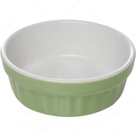 "Gibson Everyday 7"" Tile Pet Bowl"