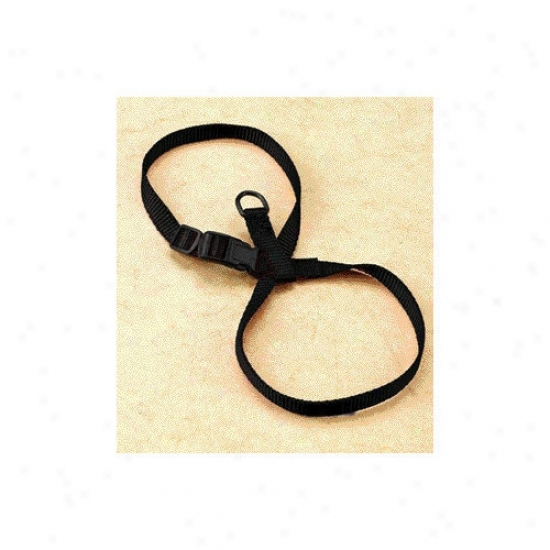 Hamilton Pet Products Adjustable Figure Eight Cat / Pup Accoutrements In Black