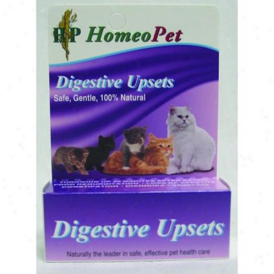 Homeopet 04724 Digestive Upset Feline