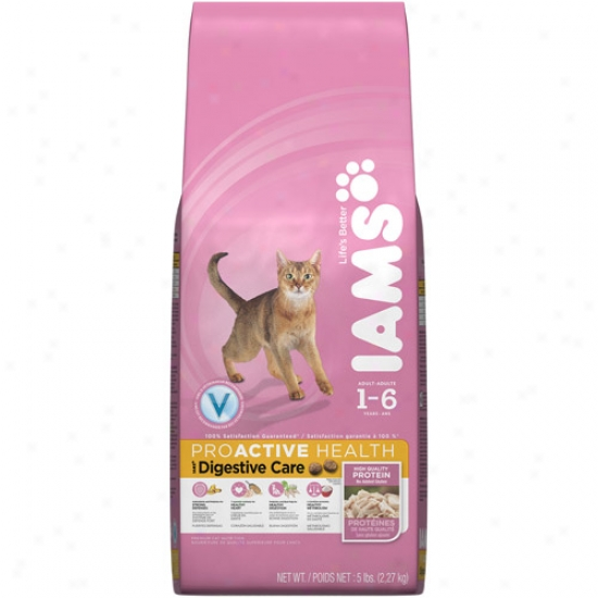 IamsP roactive Health Digestive Care Cat Food, 5 Lb