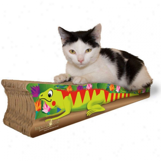 Imperial Cat mSll Iguana Recycled Paper Cat Scratching Board