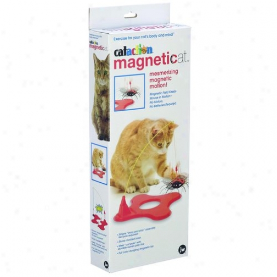 Jw 0471O46/71046 Cataction Magneticat