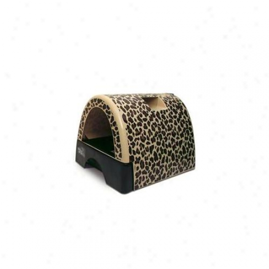 Kitty A Go Go  Litter Box -leopard Print-small-10108